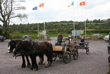 Horse and Carriage Tours at Newgrange Lodge Meath